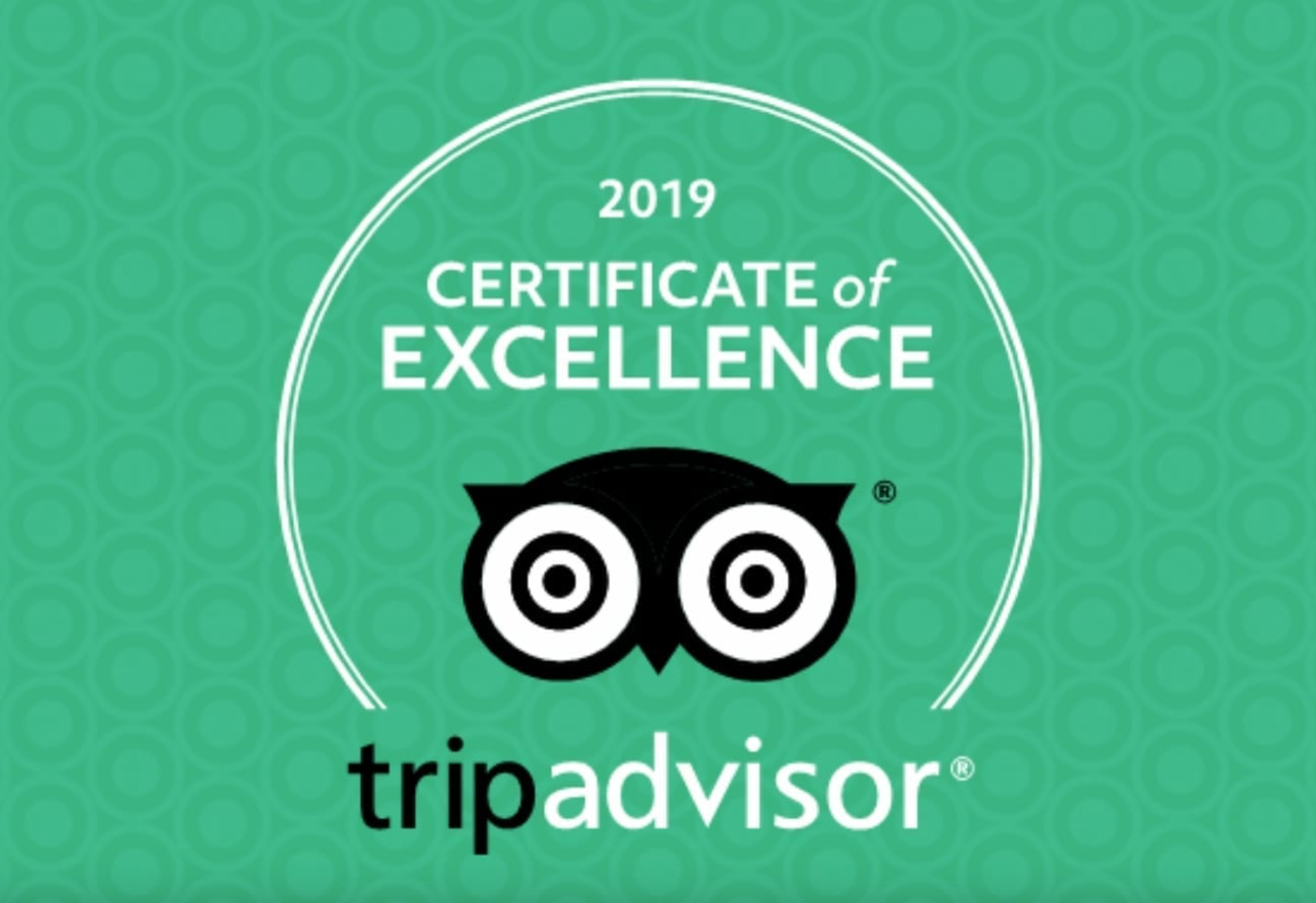TripAdvisor awards the BLUE WHALE INN the 2019 Certificate of Excellence
